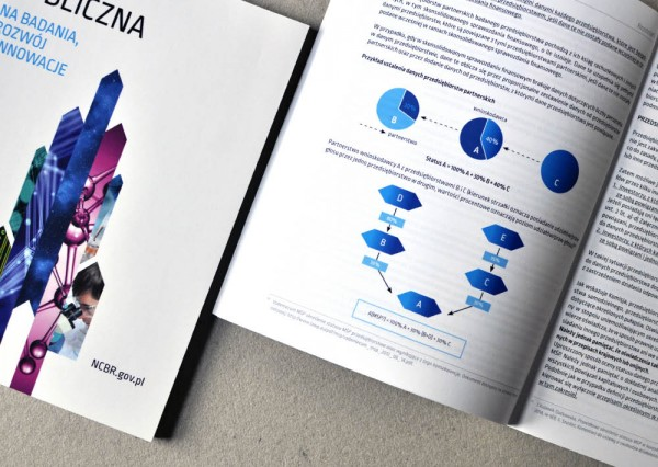 Projekt graficzny publikacji - Pomoc Publiczna